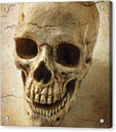 Textured Skull Acrylic Print