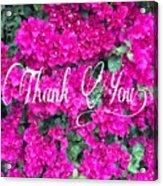 Thank You 1 Acrylic Print