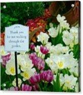 Thank You For Not Walking Thru The Garden Acrylic Print