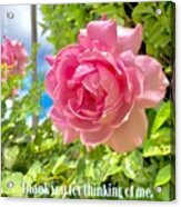 Thank You For Thinking Of Me- Rose Acrylic Print
