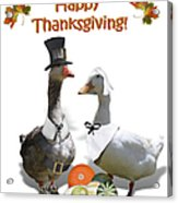 Thanksgiving Pilgrim Ducks Acrylic Print