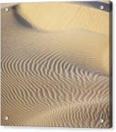 Thar Desert Dunes Acrylic Print