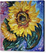 That Sunflower From The Sunflower State Acrylic Print
