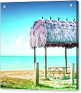 Thatched Roof Hut On Beach Acrylic Print