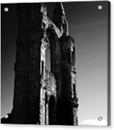 The Cathedral Wall Acrylic Print