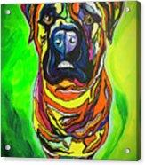 The Abstract Mastiff Acrylic Print