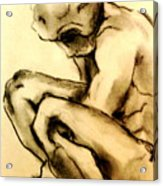 The Adolescent  Acrylic Print