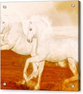 The Andalusians Acrylic Print