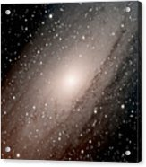 The Andromeda Galaxy Close  Up Acrylic Print