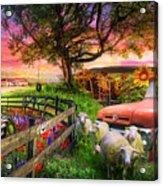 The Appalachian Farm Life In Beautiful Morning Light Acrylic Print