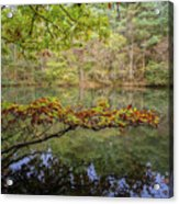 The Arsenic Lake Devon Great Consols Acrylic Print