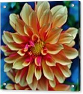 The Art In Flowers 2 Acrylic Print