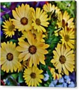 The Art In Flowers 5 Acrylic Print