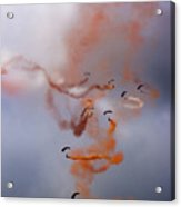 The Art Of Falling Down Acrylic Print