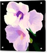 The Artful Hibiscus Acrylic Print