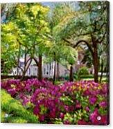 The Azaleas Of Savannah Acrylic Print by David Lloyd Glover