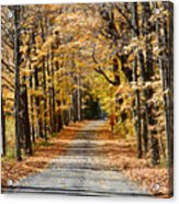 The Back Road In Autumn Acrylic Print