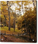 The Back Way Acrylic Print