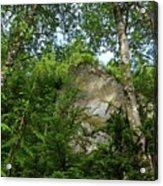 The Base Of Beacon Rock  Acrylic Print