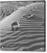 The Beach Comber Acrylic Print