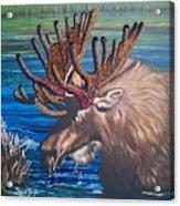 Big Bad Bead  Dealer    Flying Lamb Productions  Acrylic Print