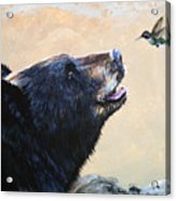 The Bear And The Hummingbird Acrylic Print