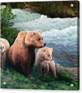 The Bears Of Katmai Acrylic Print