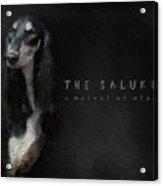 The Beautiful Saluki 01 Acrylic Print