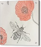 The Bee And Red Poppies  Acrylic Print