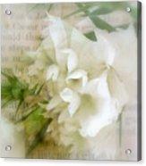 The Beginning Of Love Acrylic Print