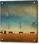 The Benches By The Moon Acrylic Print