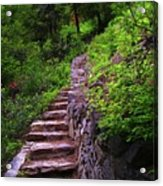The Best Way Up Acrylic Print