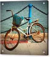 The Bicycle Acrylic Print