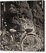 The Bicycle Garden II Acrylic Print
