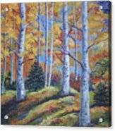 The Birches Acrylic Print