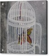 The Bird Cage Acrylic Print