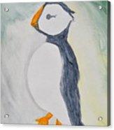 The Bird Of Winter Acrylic Print