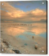 The Birds And The Ice Acrylic Print
