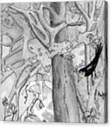 The Blackbird And The Worm Acrylic Print
