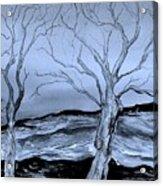 The Bleak Terrain  Acrylic Print