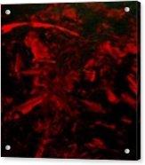 The Blood Acrylic Print