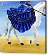 The Blue And The White - Princess Starliyah Riding Candis Acrylic Print
