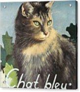 The Blue Cat Acrylic Print
