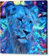 The Blue Lioness Acrylic Print