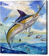The Blue Marlin Leaping To Eat Acrylic Print by Terry  Fox