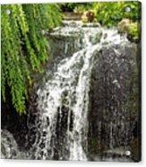 The Botanic Waterfall  Acrylic Print by Lori Frisch