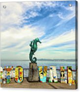 The Boy On The Seahorse Pano Acrylic Print