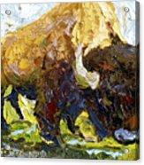 The Buffalo Acrylic Print