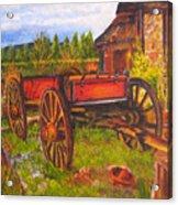 The Buggy, 11x14, Oil, '07 Acrylic Print
