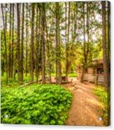 The Cabin In Montana Acrylic Print